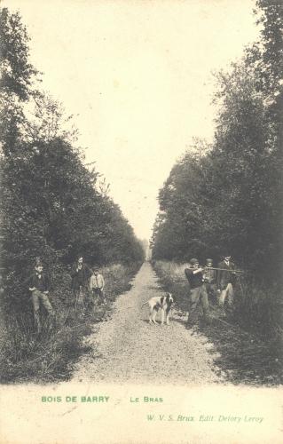 BARRY - Bois de Barry, le Bras - Oblitération 1909