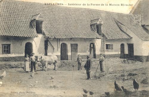 ESPLECHIN - Ferme de la Maison blanche - Accary Photo Baisieux - Oblitération 3 1910 - Coordonnées GPS • Nord : 50 35 10 • Est : 3 16 41