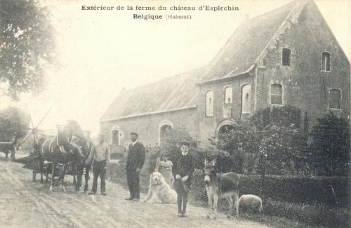 ESPLECHIN - Ferme du château - Oblitération 26 8 1909 - Coordonnées GPS • Nord : 50 34 30 • Est : 3 18 56