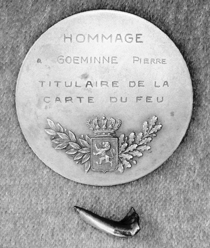 Goeminne Pierre Balle et médaille
