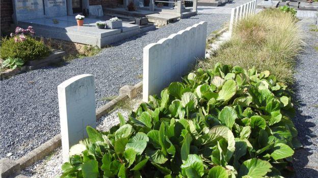 Orcq.be - Les hommes sont enterrés très près l'un de l'autre dans le cimetière belge